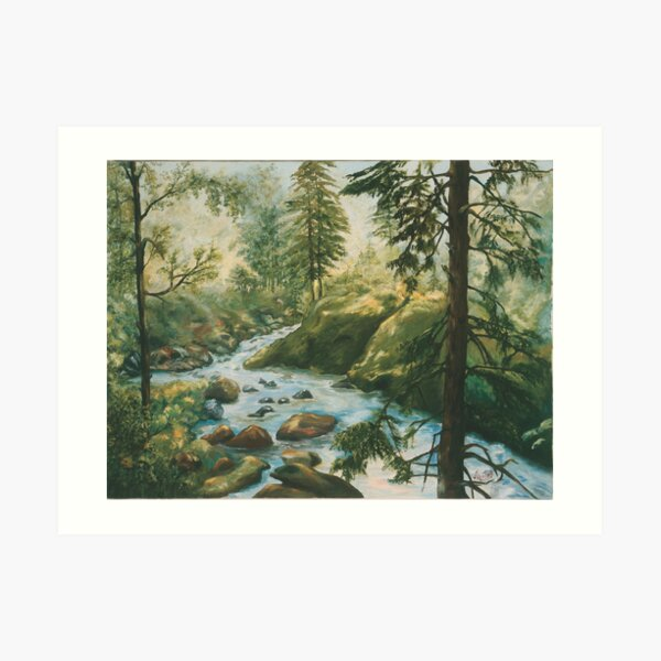 Adirondack Stream Art Print