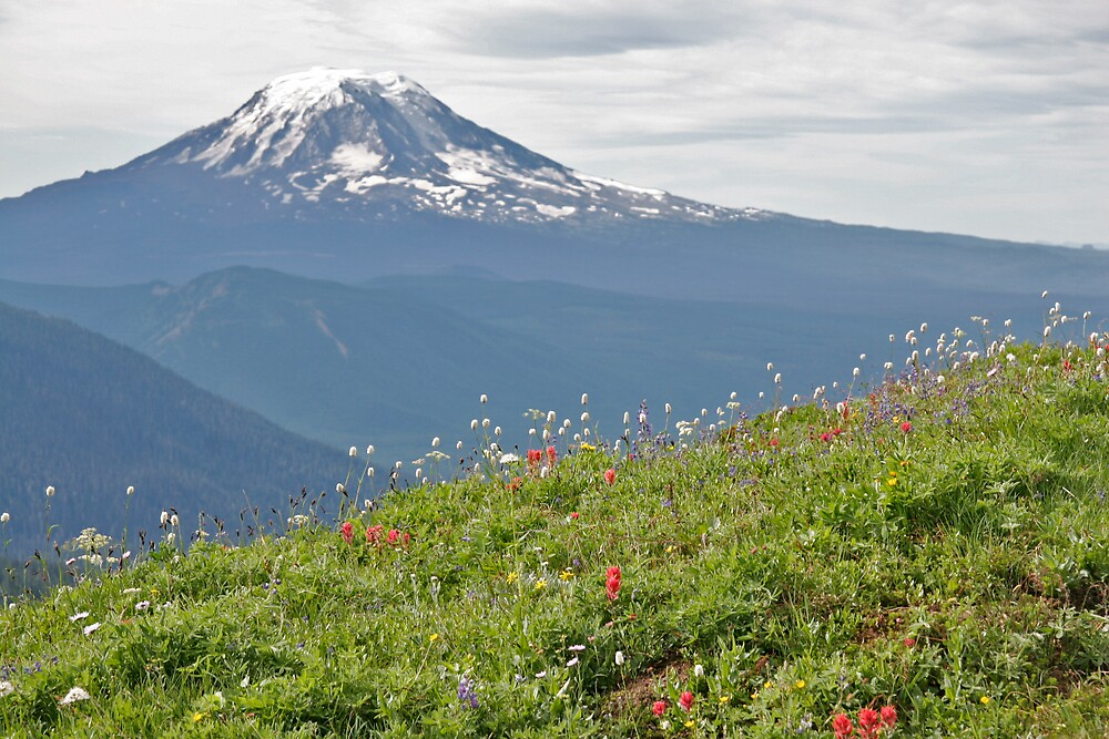 Mount Adams, WA by MPDurbin