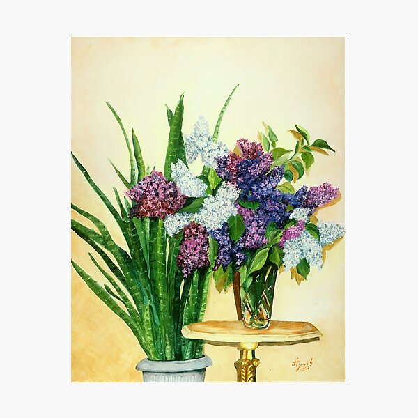 Lilacs II Photographic Print