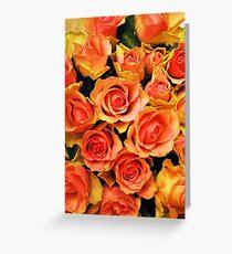 Fabulous roses Greeting Card
