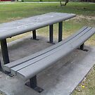 Denting Park Bench by Snoboardnlife