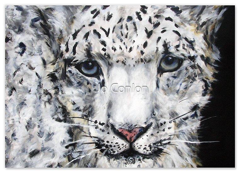 snow leopard by Jo Conlon