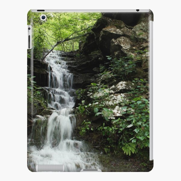 Rocks and Ferns iPad Snap Case