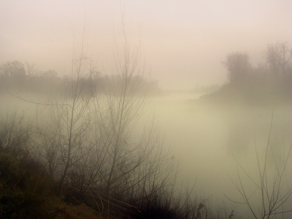 Into The Fog by DottieDees