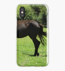 Mare and Colts in a Pasture iPhone Case/Skin