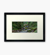 Panorama of Galbena gorge in Romania Framed Print