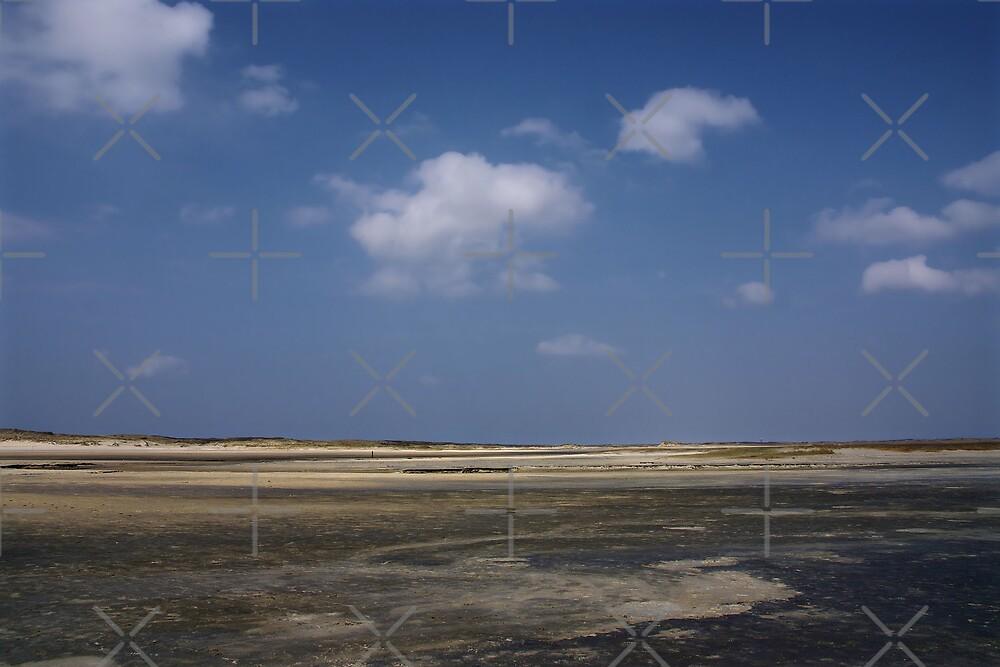 Island Texel by AnnieSnel