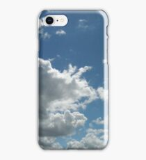 MetroParks Zoo 17 iPhone Case/Skin