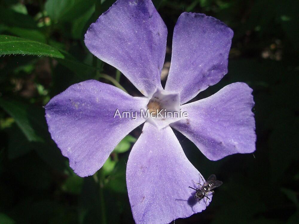 Flower  by Amy Scott