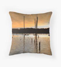 Fishing on Lake Erling IV Throw Pillow