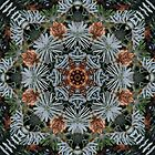 Spruce Cones And Needles Kaleidoscope K4 by rvjames