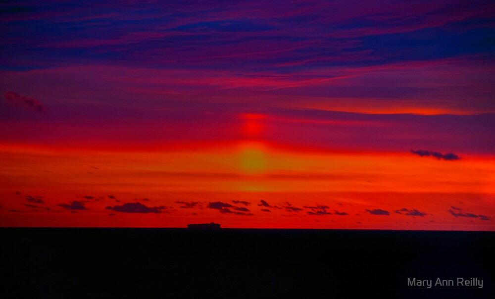 Fire Sky by Mary Ann Reilly
