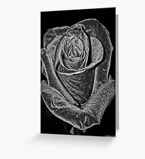 Silver Rose Greeting Card