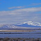 SNOW ON THE MOUNTAIN TOP by Stacy Colean