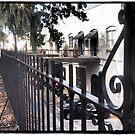 Behind the Fence by Cyn Piromalli