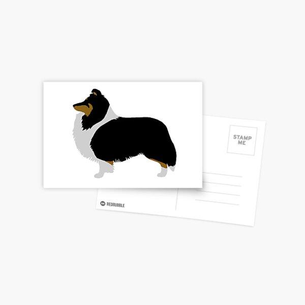 Shetland Sheepdog (Tricolour) Greetings Card Postcard