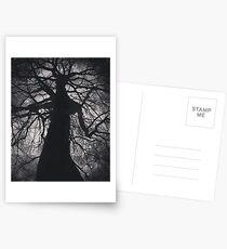 Mister Tree Postcards