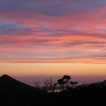 Sunset Dunedin, NZ.  October 2008 by snappypixie