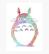 Watercolor Totoro 2 Photographic Print