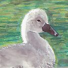 Baby Swan by Angela Micheli Otwell