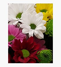 MIXED BLOOM Photographic Print