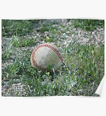 Baseball Lying in the Grass Poster