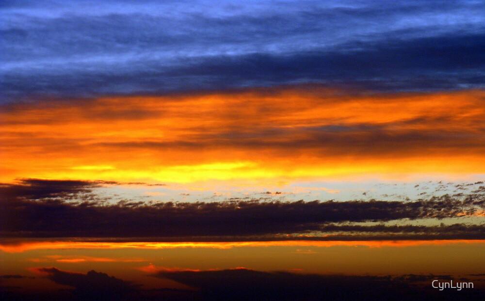 Big Texas Sunrise by CynLynn