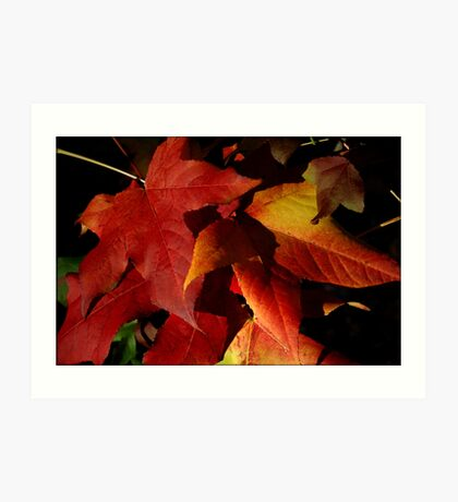 ~Autumn Leaves~ Art Print