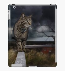 Cat walking the fence. iPad Case/Skin