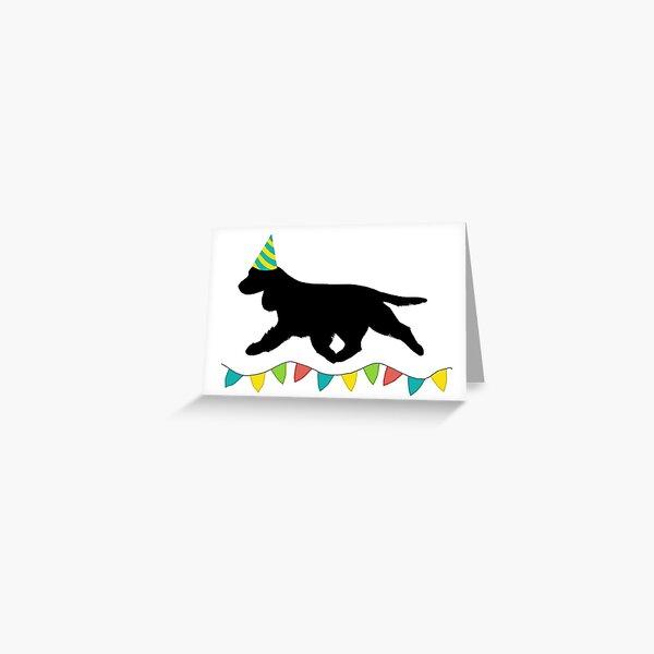 Cocker Spaniel (Black) Birthday Card Greeting Card