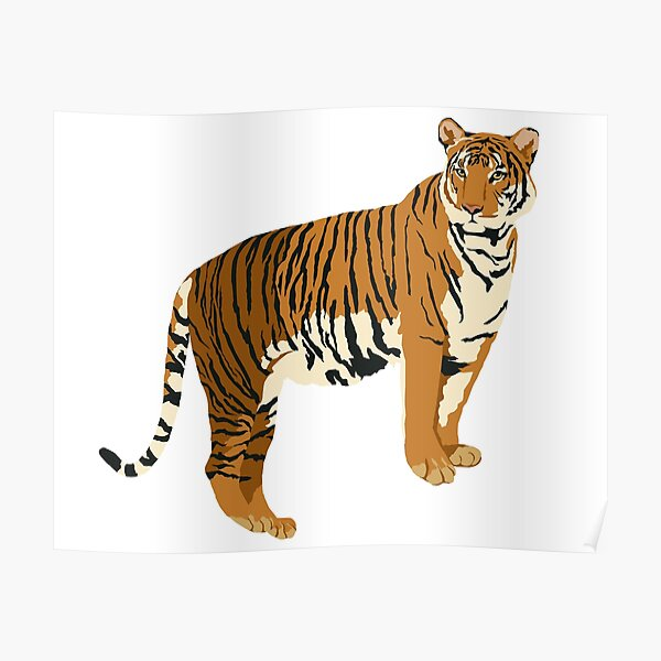 Realistic Tiger on White Background Poster