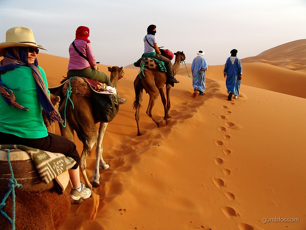 Trekking into the Sahara, Morocco by gumblossom