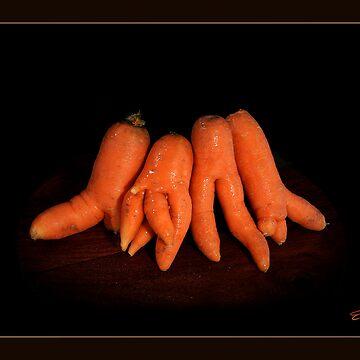 Carrots by emiljianu