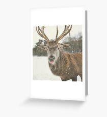 Reindeer Lips Greeting Card