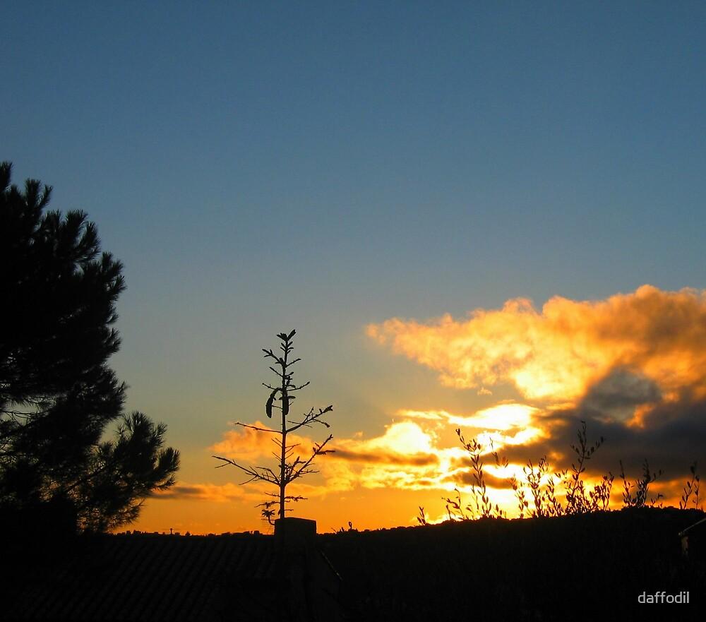 wonderful sunset ! by daffodil