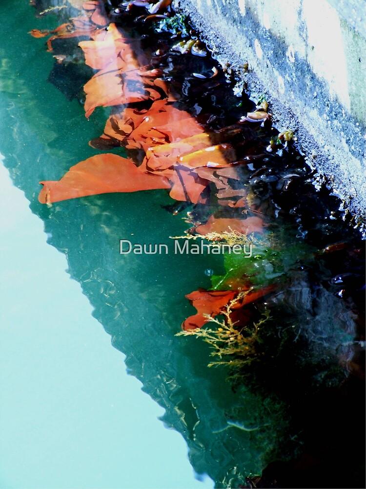 Sea....Weeds? by Dawn Mahaney