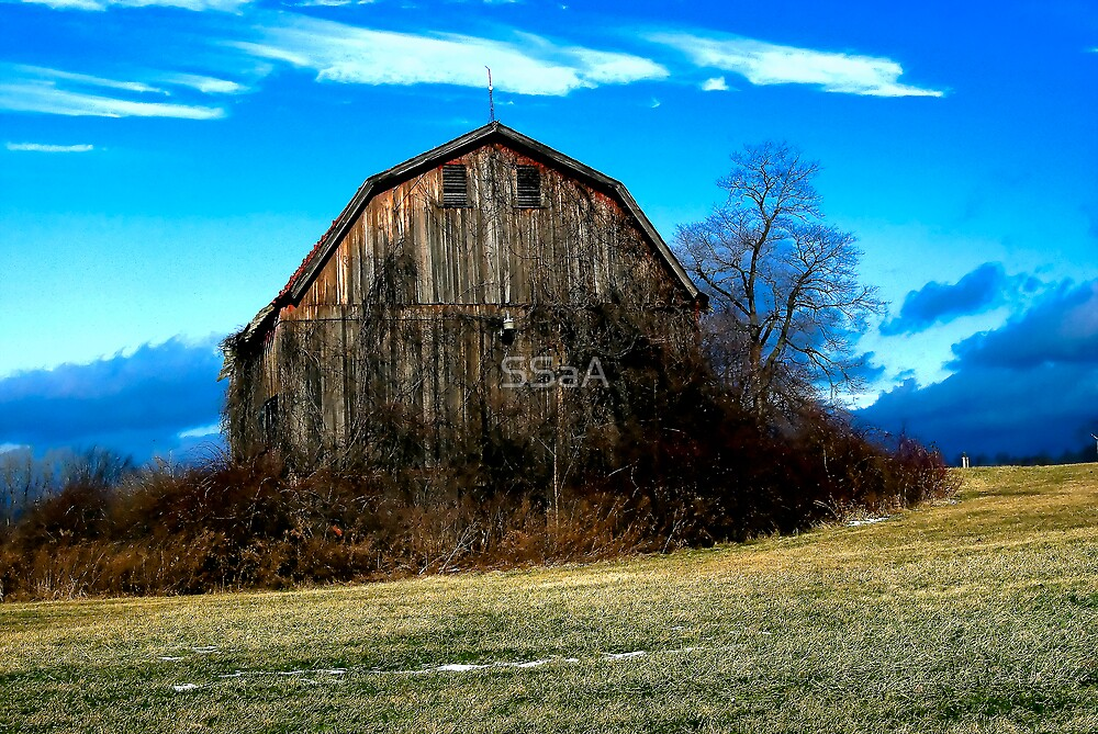 Old Barn by SSaA