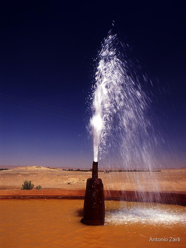 Fountain in the desert by Antonio Zarli