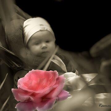 Awh Pretty Rose by StarKatz