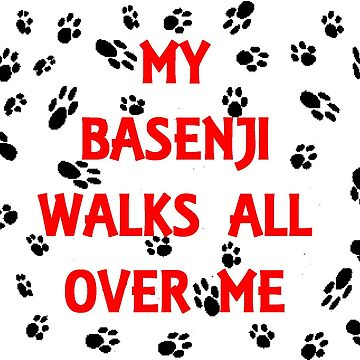 my basenji walks all over me by marasdaughter