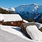 Barnhouse shedding snow by mamba