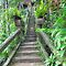 Stairs in the Green