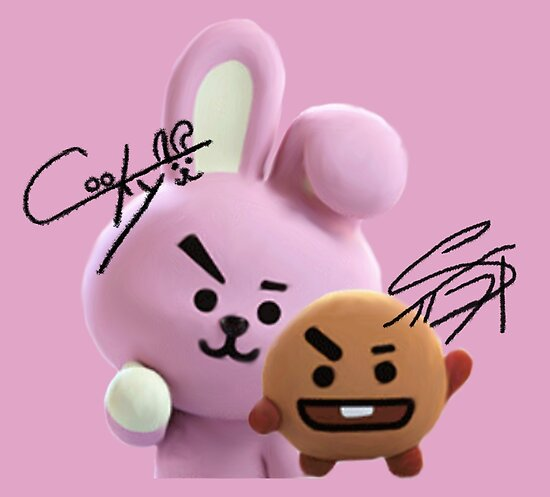 Cooky House Cookies