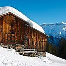 Alpine Barn in Winter by mamba