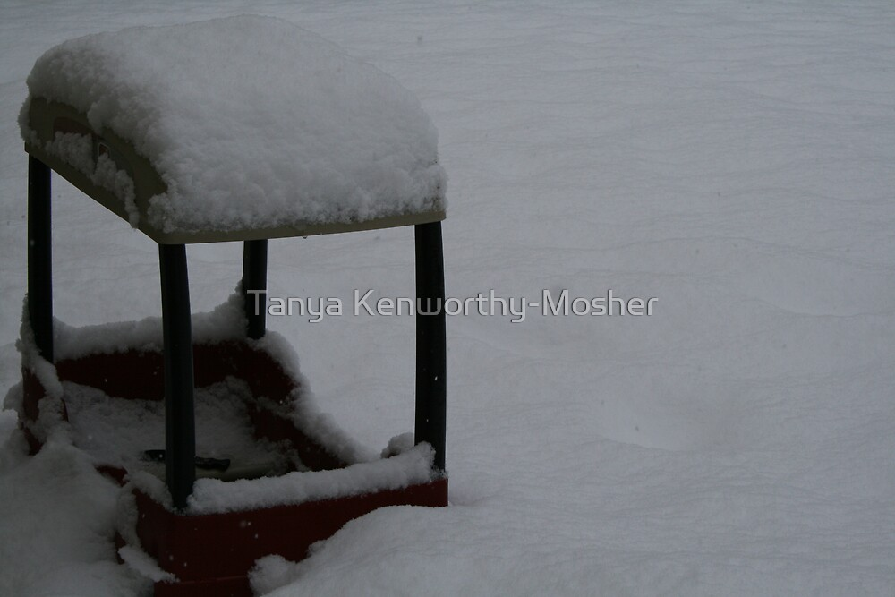 Snowed In by Tanya Kenworthy-Mosher