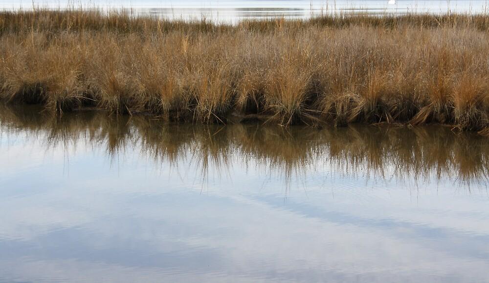 My soul has grown deep like the rivers by Emily Watkins Ragland