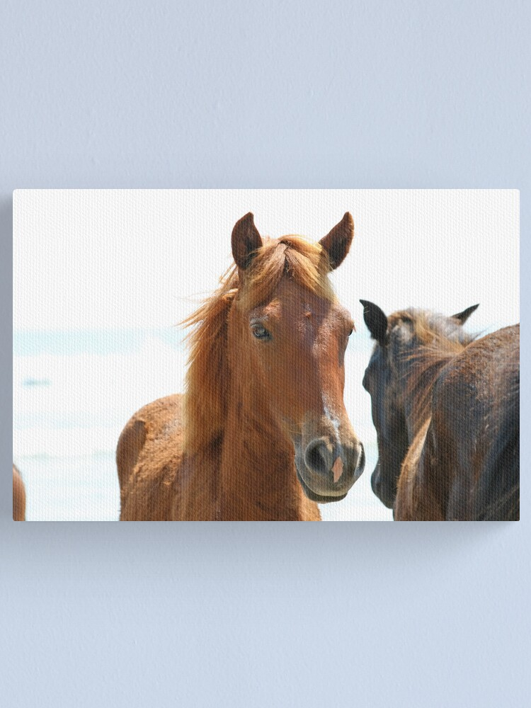 Alternate view of Wild Horses Canvas Print