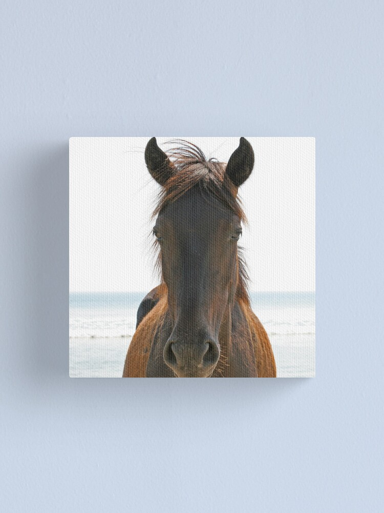 Alternate view of Wild Horse Canvas Print