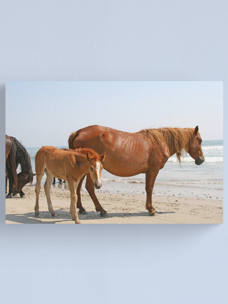 Alternate view of Wild Horses Canvas Print