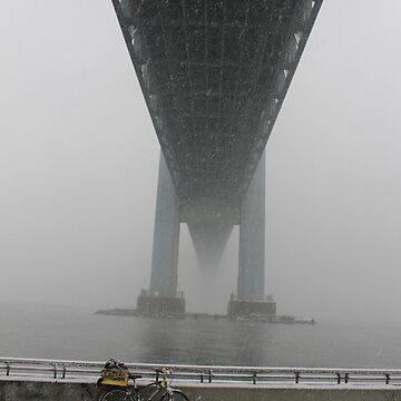 Verrazano Narrows Bridge view from Brooklyn. The first snow is falling. by znamenski
